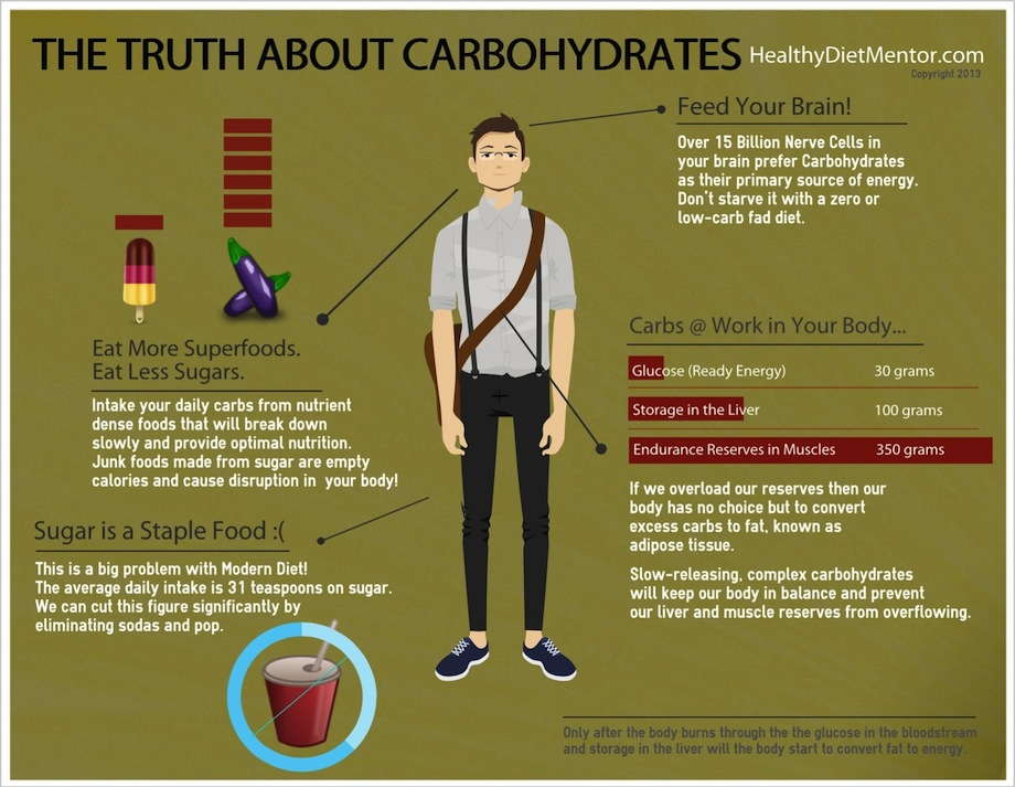 what are carbohydrates? - a concise guide, Human Body